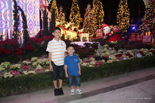 Flower Dome Christmas 8