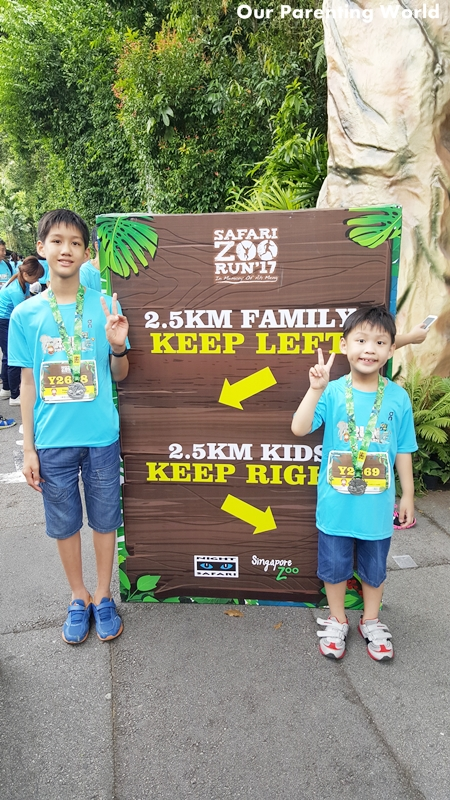 Safari Zoo Run 2017